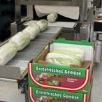 упаковка капусты в термоусадочную пленку