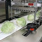 упаковка салата в термоусадочную пленку